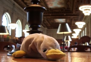 Duckie at the NYC library mini
